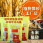 安徽UMA天然植物豆腐猫砂,玉米绿茶猫沙工厂代加工生产OEM,外贸出口