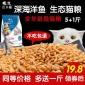 宠物猫粮批发海洋三文鱼味幼猫成猫猫咪主粮老年宠物毛零食500g