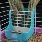 7个包邮兔子食盆龙猫荷兰猪宠物用品 两用二合一草架兔子食盆草架